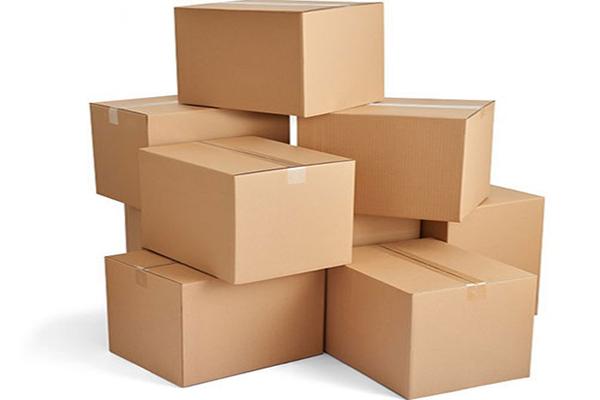 xuong-in-thung-carton