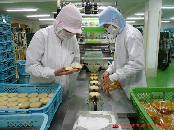 quy trình đóng gói thực phẩm an toàn